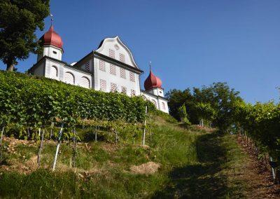 Weingut-Tellen-Landenberg-Sarnen
