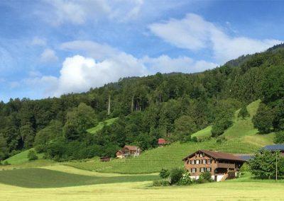 Weingut-Tellen-Obwalden